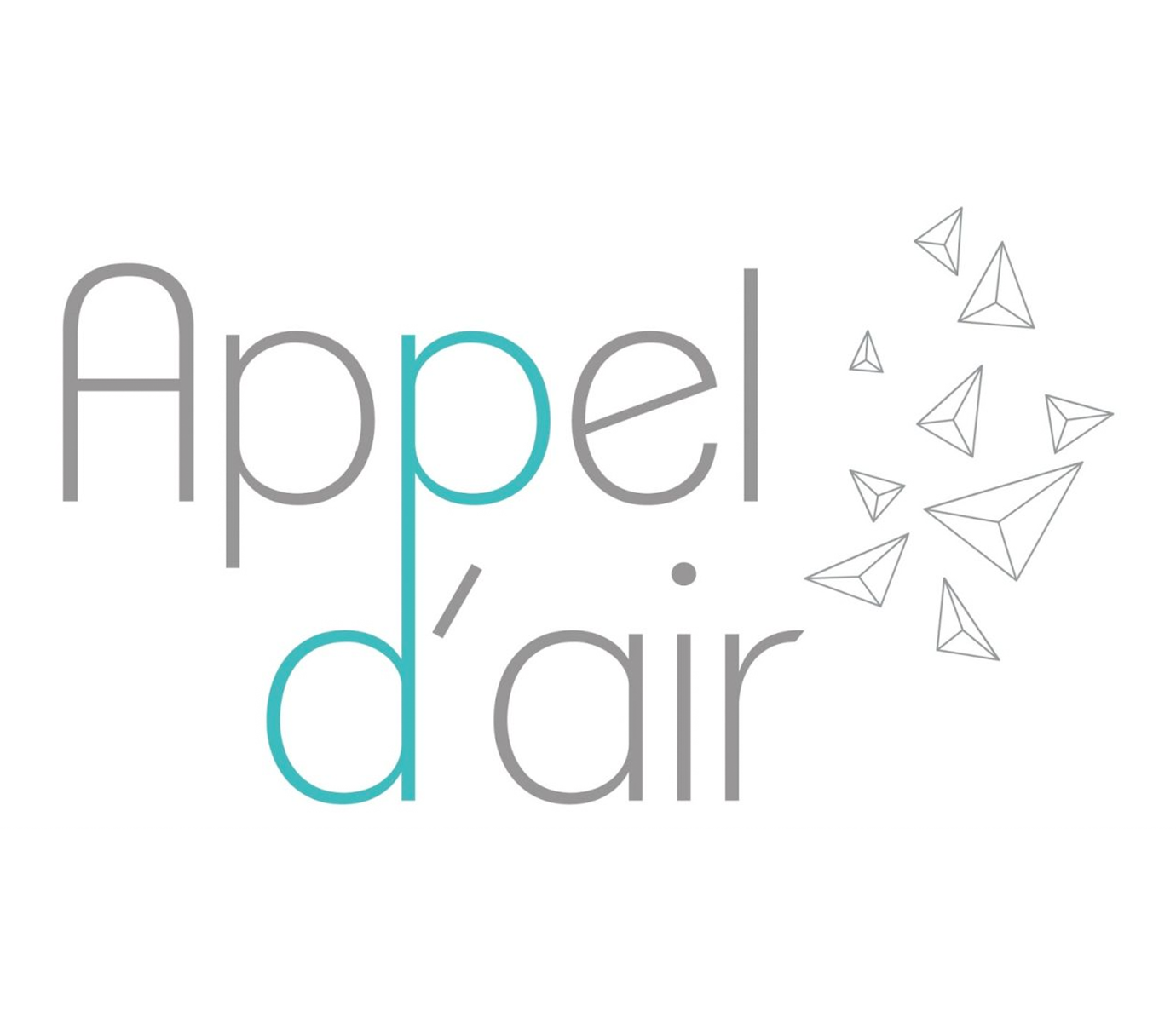 Appel d'air, 2e édition